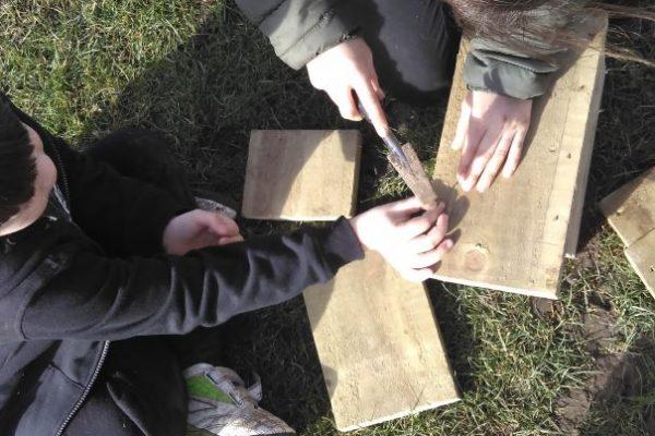 Making bird boxes